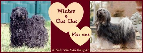 Winter & Chu Chu - die Eltern unserer Q-Kids