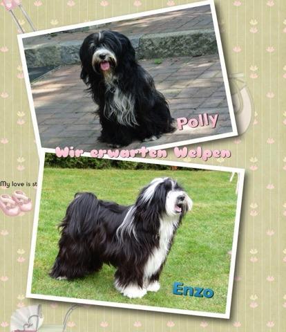 Daisy Subansuri ( Polly) und Lee-la-wadee Enzo Ferrari