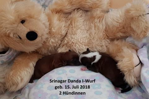 Srinagar Danda I-Wurf