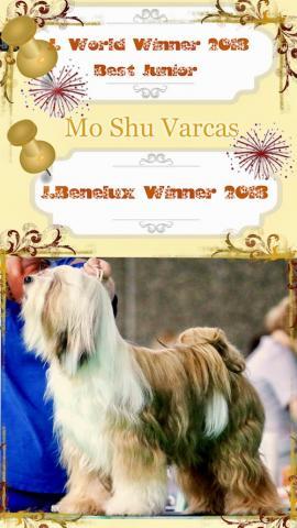 Mo Shu Varcas Jugend Weltsieger