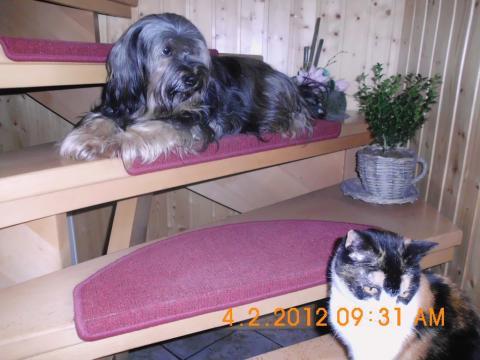 Gwendy mit Kimba, die nach 15 Jahren von uns gegangen ist.