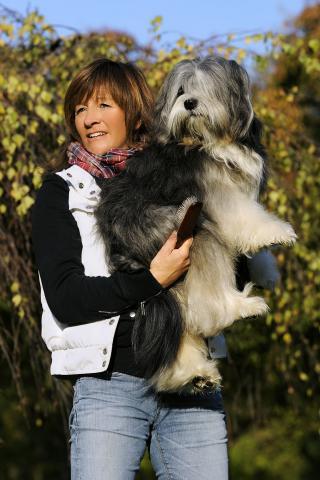Tibet Terrier Ski-La-Kyi Jari-Justus