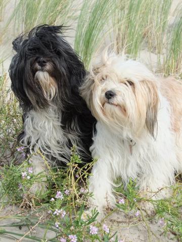 Karuna (links) mit ihrer Freundin Mani