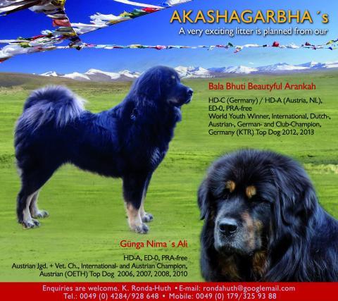 Bala Bhuti Beautyful Aranka und Günga-Nima´s Ali