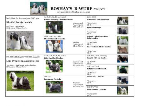 Ahnentafel / Pedigree Boshay's B-Wurf