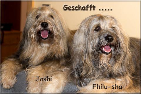 Fhilu-sha und Joshi