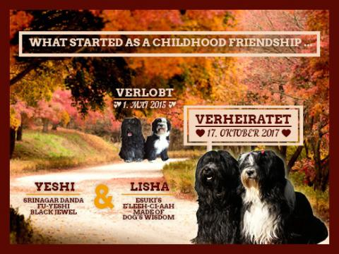 Hochzeit Lisha &Yeshi