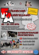 Flyer Puschendorf 2014